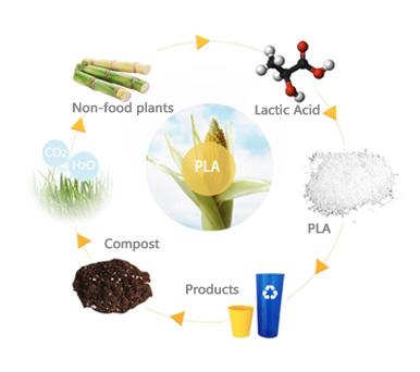 Bio-based material loops