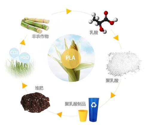 聚乳酸 循环